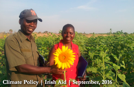 Christopher and Matilda of the Mynororo Sunflower Producers Group, Chunya district, Mbeya, Tanzania. Photo: Irish Aid